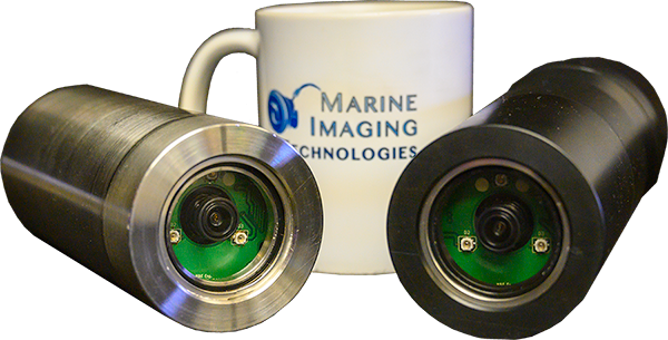 IP_Cameras_Both_Scale_Med