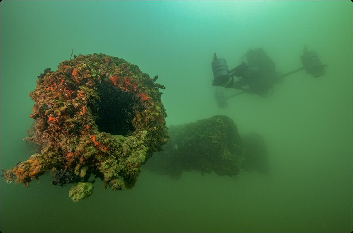 Sea_Array_V4_PERL_Cannon_loop_1200.pxpng_